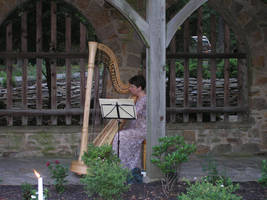 Harp by kashmier