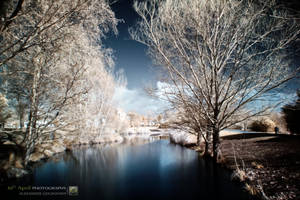 InfraRed River by 10thapril