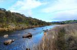 Downstream by Brakawolf