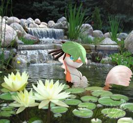 Kai On a Koi pond by FleetyArrowDraw