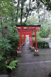 shrine path by chloe-tsundere
