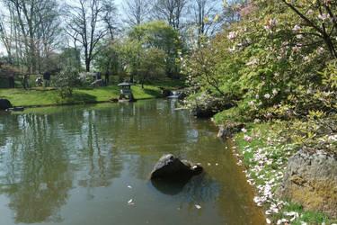 lake in the garden by chloe-tsundere
