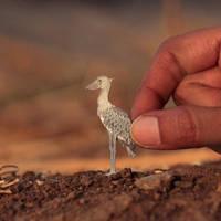 Shoebill Stork - Paper cut birds by NVillustration