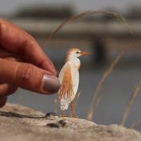 Cattle Egret  - Paper cut birds by NVillustration