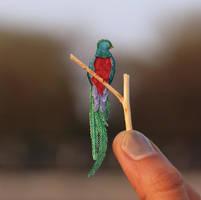 Resplendent Quetzal - Paper cut birds by NVillustration