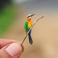 White Fronted Bee-eater - Paper cut birds by NVillustration