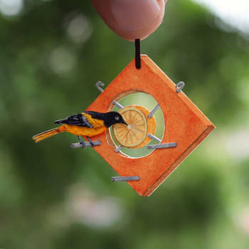 Baltimore Oriole - Paper cut birds by NVillustration