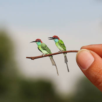 Blue-throated Bee-eater - Paper cut birds by NVillustration