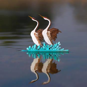 Western Grebe - Paper cut birds by NVillustration