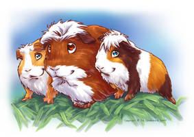 Guinea Pigs II by Fany001