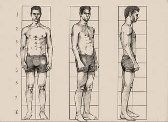 More exercice- Anatomy Adult man 1.82 m by fabioptdraw