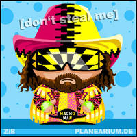 WWF: Macho Man Randy Savage by planearium