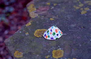 Painted shell by Nigel-Kell