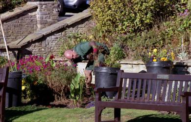 Tending the flower beds by Nigel-Kell