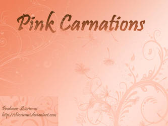 Pink Carnations GXB Otome by Shioriemei