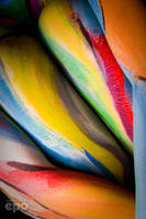 BodyPaint in Abstraction 004 by ee-po