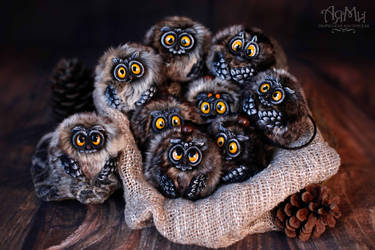 Little owlets by WorkshopAyami