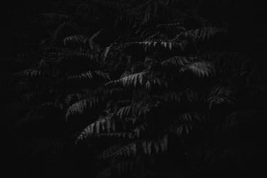 Undead - Fern by Sc0orp