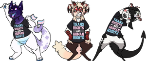 Trans Rights Are Human Rights by RecycIedTrash