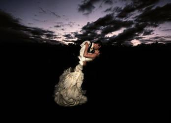Wedding Day Sunset by aquapell