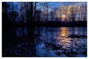 Floodland III by aquapell