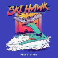 Ski Hawk by HillaryWhiteRabbit