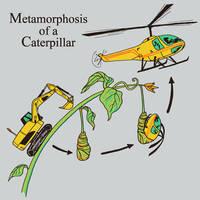 Metamorphosis of a Caterpillar by HillaryWhiteRabbit