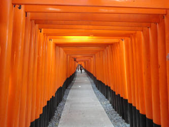 Fushimi Inari Shrine by KXSakuraba