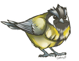 Pidgey-Great tit by CatherineSt
