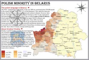 Polish minority in Belarus by IasonKeltenkreuzler