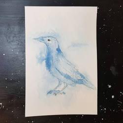 Raven Spirit  by Albiona