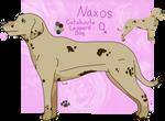 Naxos by SivensArt