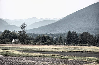 TheLandscape3 by Mackingster