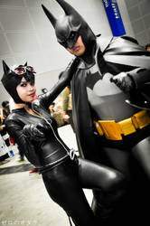 Batman and CatWoman by FuuriZero