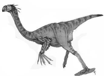 Gigantoraptor erlianensis by Paleoarte