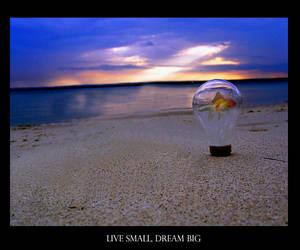 Live Small Dream Big by luciddreamer4423