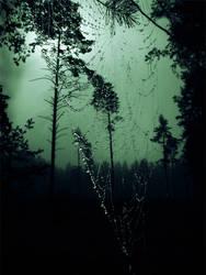 fairyforest by BrokenLens