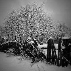 snow..IV by BrokenLens