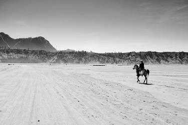 Bromo Horse by muhammadsamien
