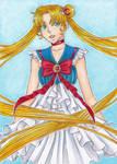 .Sailor Moon. by SamuraiNataku