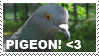 Stamp - Pigeon by Godbird