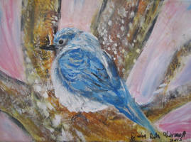Morning Bluebird by juliarita