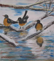 Robins In The Snow by juliarita