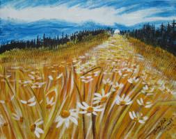 River Of Daisies by juliarita