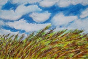 Wheat On A Windy Day by juliarita