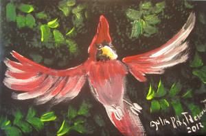 Cardinal In Flight by juliarita