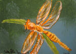 Orange Dragonfly by juliarita