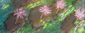 Sun Dancing On Lillies by juliarita