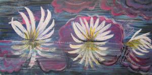 Lillies Reflection by juliarita