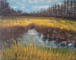 Sherwood Pond by juliarita